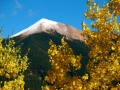 Fall colors on the road to Alta Lakes, outside Telluride